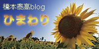 橋本泰高blogひまわり